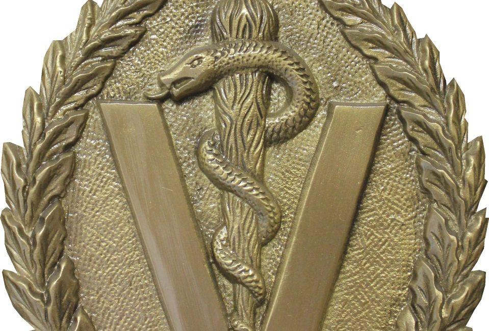 Medalla de la RACVE