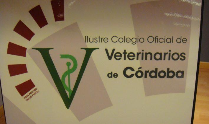 II Conferencia de Academias de Ciencias Veterinarias de España (2)