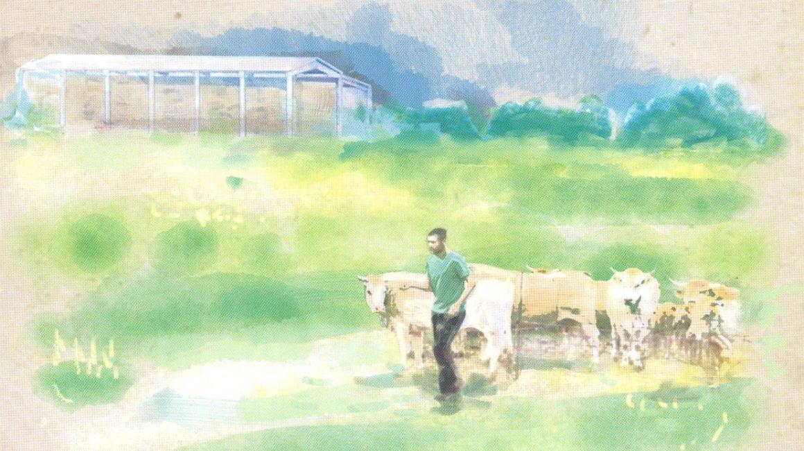 RACVE: Mesa redonda «Bioseguridad en explotaciones de ganado vacuno de carne»