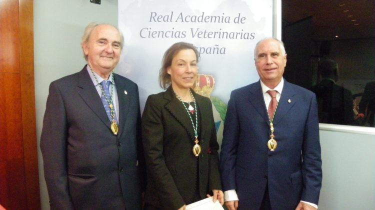 Disponible el vídeo del ingreso de la Dra. Pilar Gil como Académica Correspondiente de la RACVE