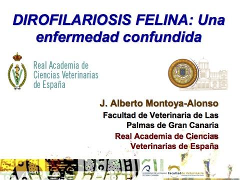 """El Dr. Alberto Montoya-Alonso, Académico de Número de la RACVE, participa en el  """"Congreso Veterinario de León Virtual (México)"""""""