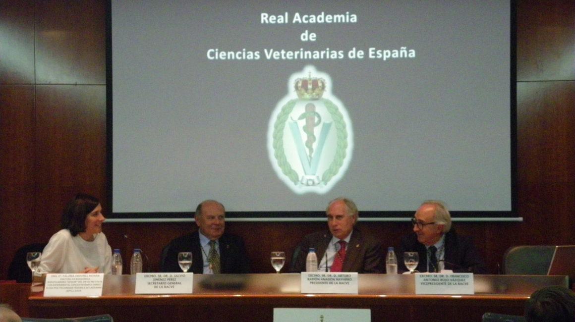 La Dra. Paloma Ordóñez Morán interviene en la sede de la Real Academia de Ciencias Veterinarias de España