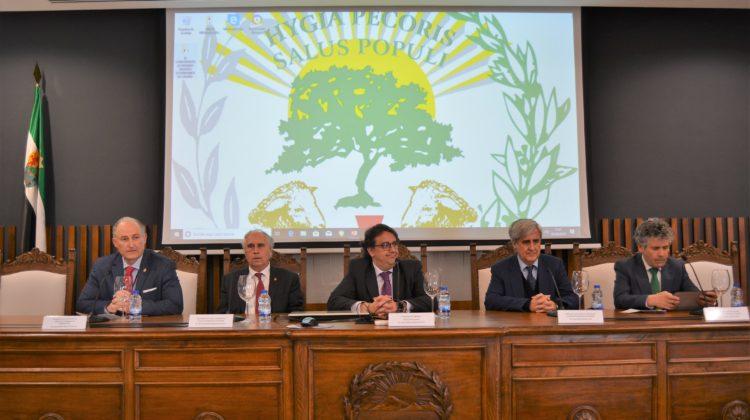 IV Conferencia de Reales Academias y Academias de Ciencias Veterinarias de España: album fotográfico