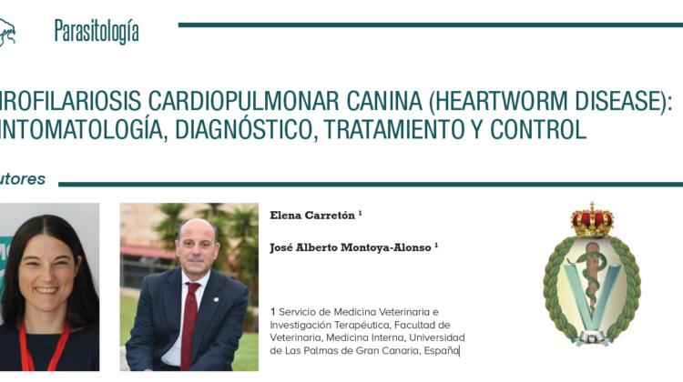 Interesante artículo del Dr. Montoya-Alonso (Académico de Número de la RACVE) en el Congreso Veterinario de León (Guanajuato-México)