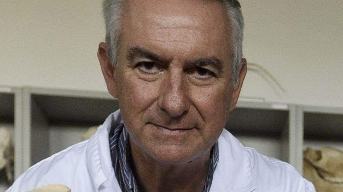 El Dr. Francisco Gil Cano, nombrado nuevo Académico de Número Electo de la Real Academia de Ciencias Veterinarias de España