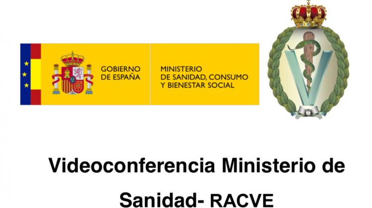 Videoconferencia Ministerio de Sanidad- RACVE