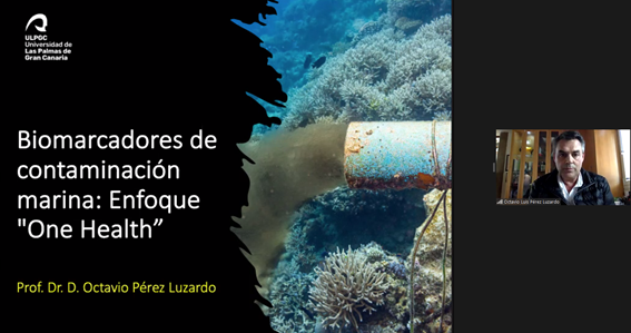 Videoconferencia del Prof. Dr. D. Octavio Pérez Luzardo