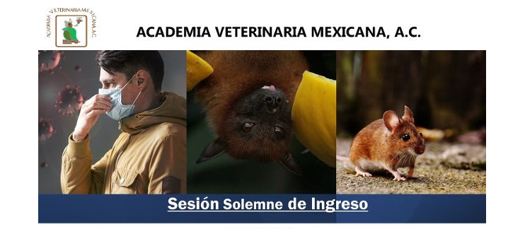 Academia Mexicana de Veterinaria, A.C., Sesión Solemne de Ingreso
